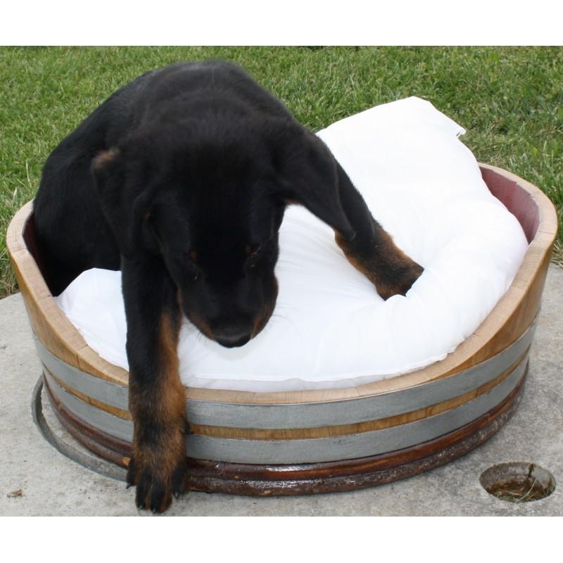 Panier pour chien et chat for Repulsif chien et chat exterieur